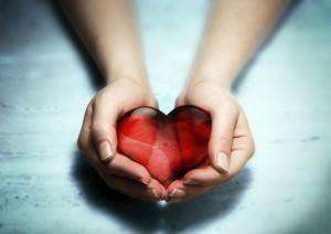 heart-in-hands1-300x212