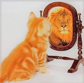 lionmirror4